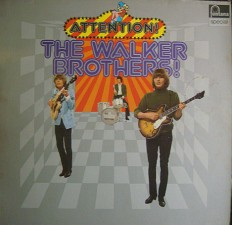 Виниловая пластинка The walker brothers - The walker brothers /G/