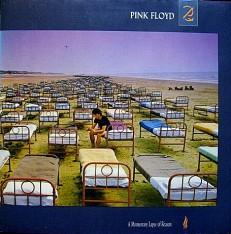 Виниловая пластинка Pink Floyd - A momentary lapse of reason /NL/