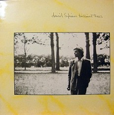 Виниловая пластинка David Sylvian - Brilliant threes /UK/