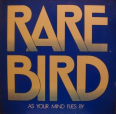 Rare Bird - As Your Mind Flies By /G/