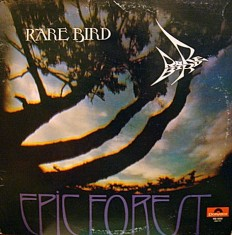 Rare Bird - Epic Forest /US/