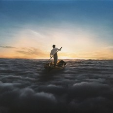 Виниловая пластинка Pink Floyd - The endless river/EU/2LP